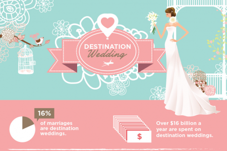 Destination Wedding Ideas Infographic