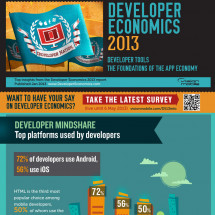 Developer Economics 2013 Infographic