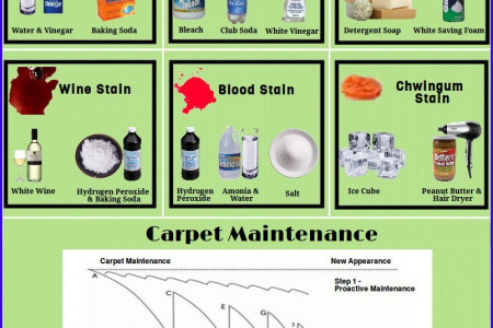 Different Types of Carpet Stains & Removal Products Infographic