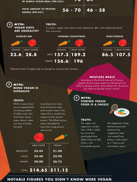 Digest This: Veganism Debunked Infographic