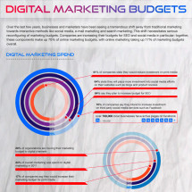 Digital Marketing  Budget Trends for 2012 Infographic
