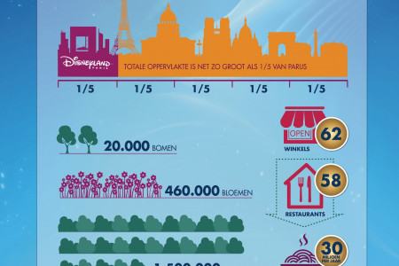 Dineyland Paris 20th Anniversary Infographic