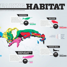 Disappearing Habitat Infographic