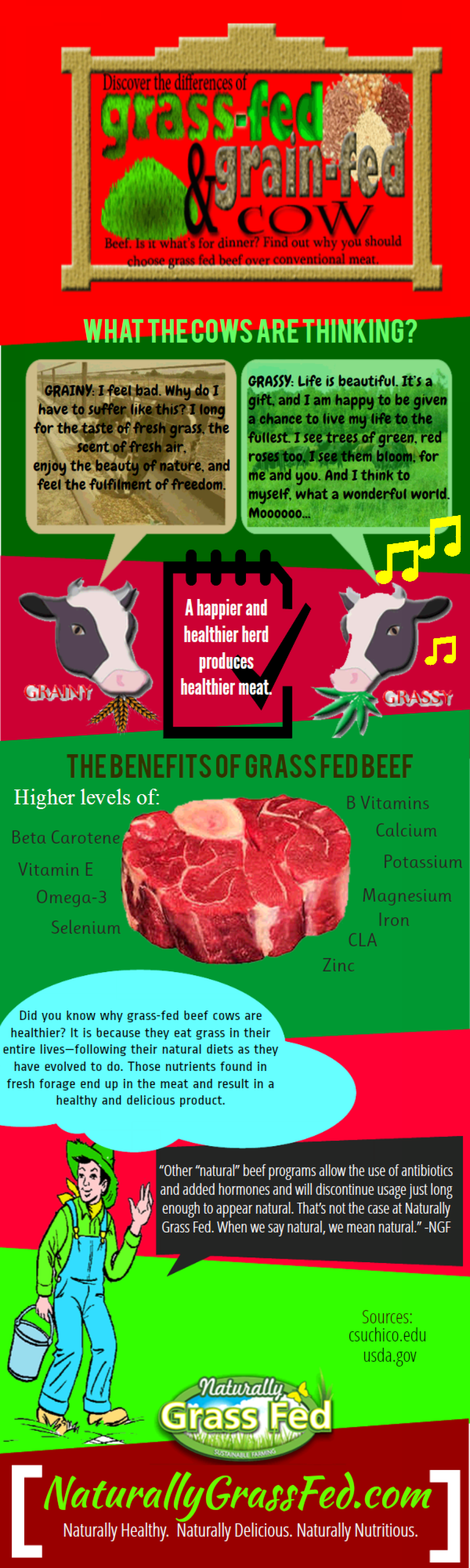 Discover the Benefits of Grass-Fed Meats Infographic