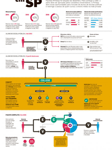 Divisions in brazilian universities Infographic