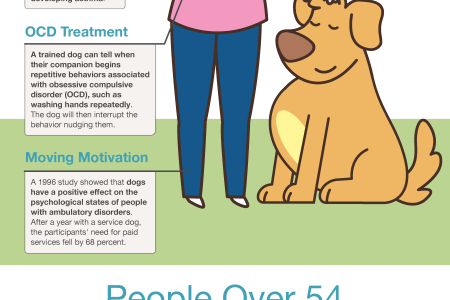 Do dogs hold holistic powers? Infographic