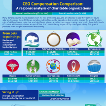 Do Donations Support Charitable Endeavors or Fund Excessive CEO Salaries? Infographic