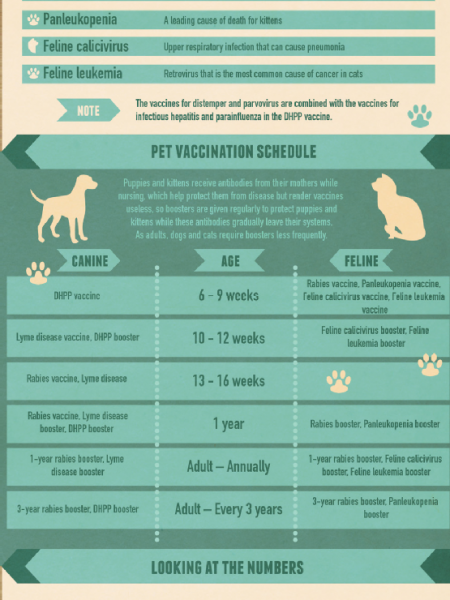 Do My Pets Really Need Vaccines? Infographic