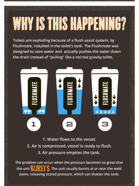 Do You Have An Exploding Toilet? Infographic