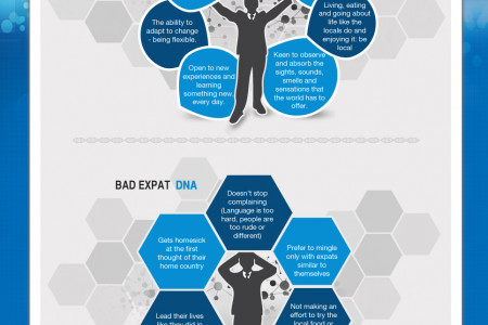Do You Have Expat DNA? Infographic