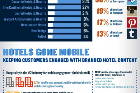 Do You Wants To Know About Digital Marketing Strategy for Hotel Industry By EBriks Infotech Infographic