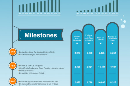 Docker Project: 2014  Year in Review Infographic