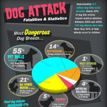 Dog Attack Fatalities and Bite Statistics Infographic