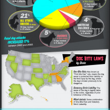 Dog Attacks: Fatalities & Statistics  Infographic
