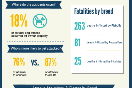 Dog Bite Accidents Infographic