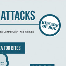 Dog Bite Attacks  Why owners have a duty to keep control over their animals Infographic