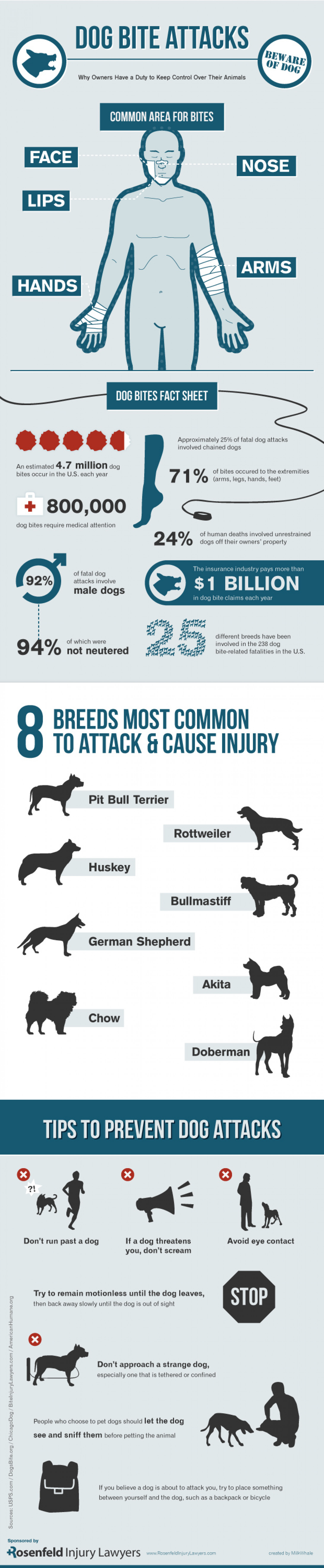 Dog Bite Attacks – Why owners have a duty to keep control over their animals Infographic