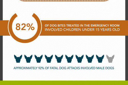 Dog Bites: Worse than The Bark Infographic