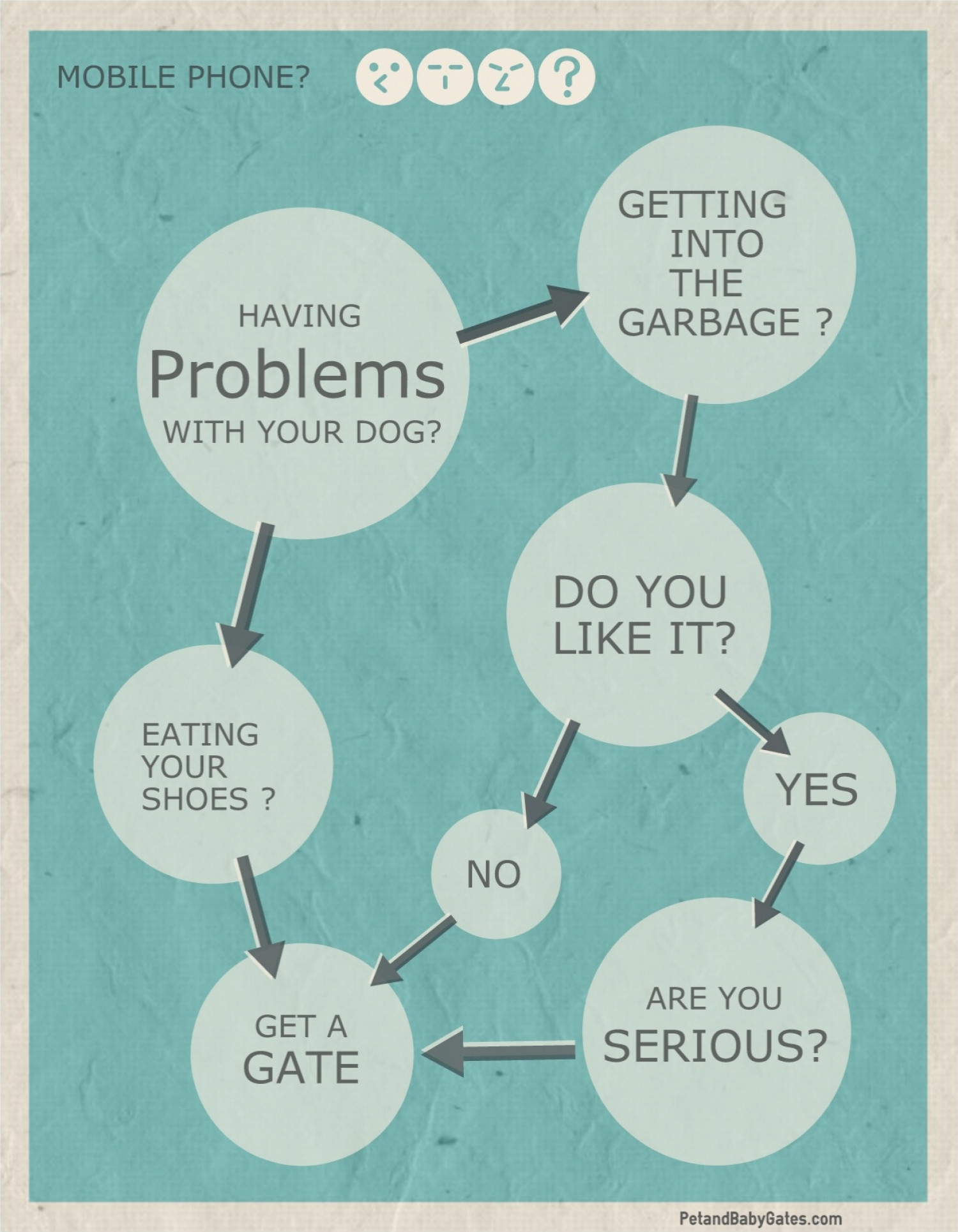 Dog problems Infographic