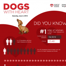 Dogs With Heart Infographic