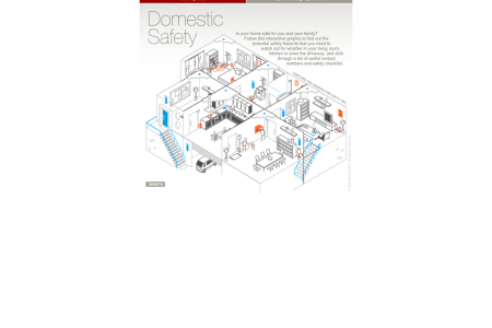 Domestic Safety Infographic