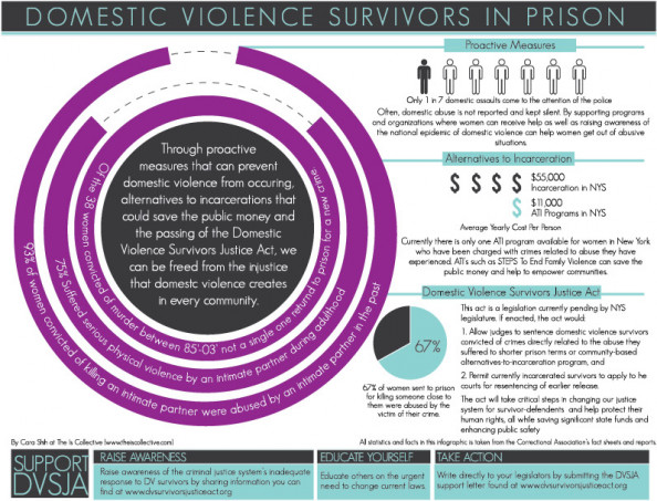 Domestic Violence Survivors Justice Act Infographic