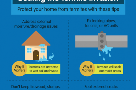 Don't Let Termites Eat Your Home Infographic