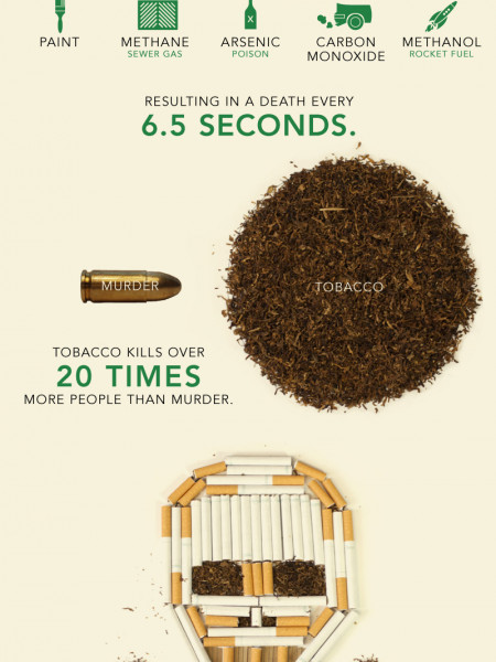 Don't Smoke! Infographic