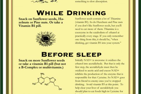 Dr. Hambphister's hangover cure Infographic