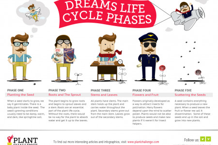 Dreams & Plants Cycle Phases Infographic