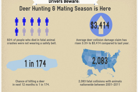 Drivers Beware: Deer Hunting & Mating Season is Here Infographic