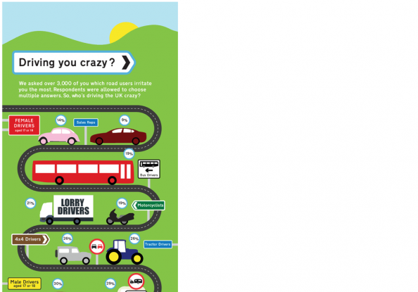 Driving You Crazy Infographic