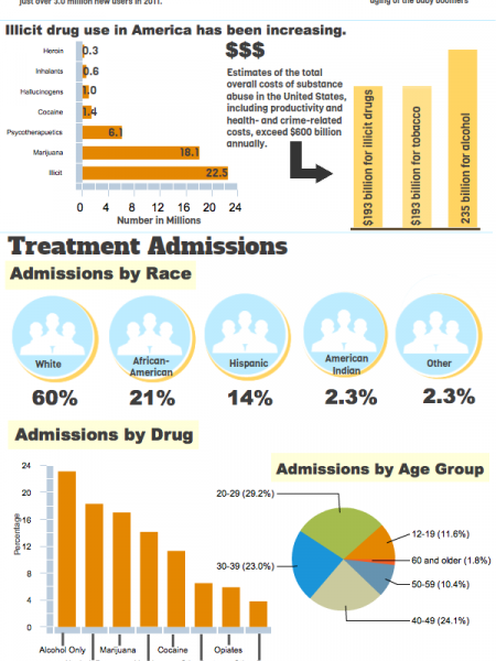 Drug Abuse In America Infographic