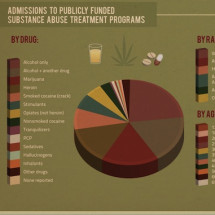 Drug Rehab Infographic