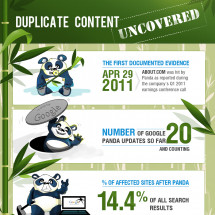 Duplicate Content Infographic