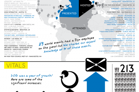 Dyn 2012 year review Infographic