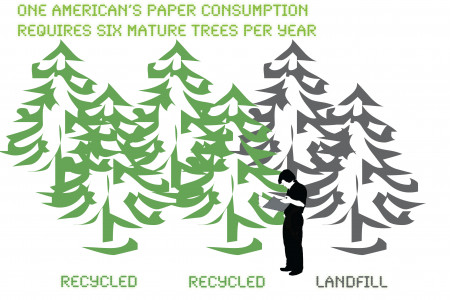 Each American uses six trees worth of paper every year Infographic