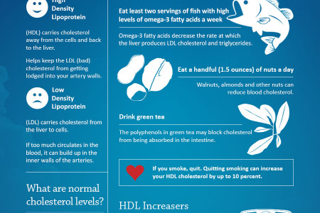 * Easy Things You Can Do To Help Your Cholesterol Infographic