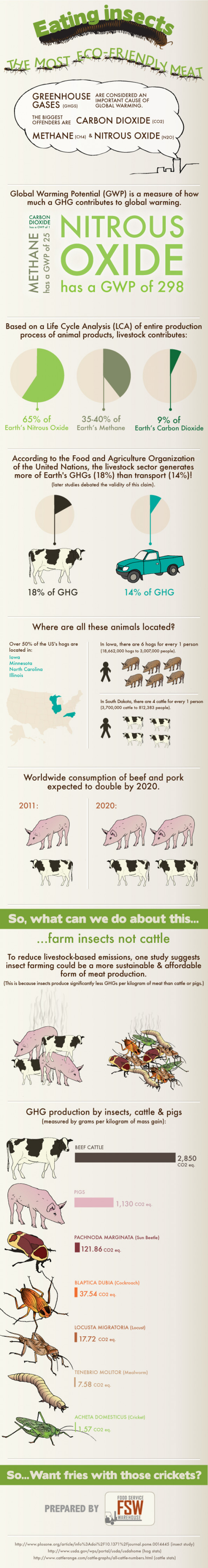 Eating Insects - The Most Eco-Friendly Meat Infographic