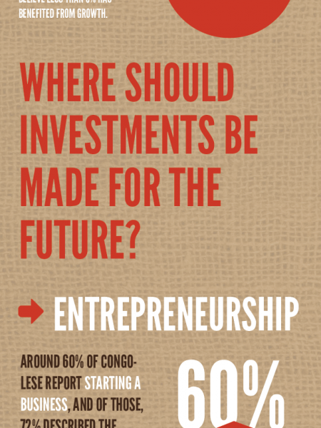 Economic Investment in the Congo Infographic