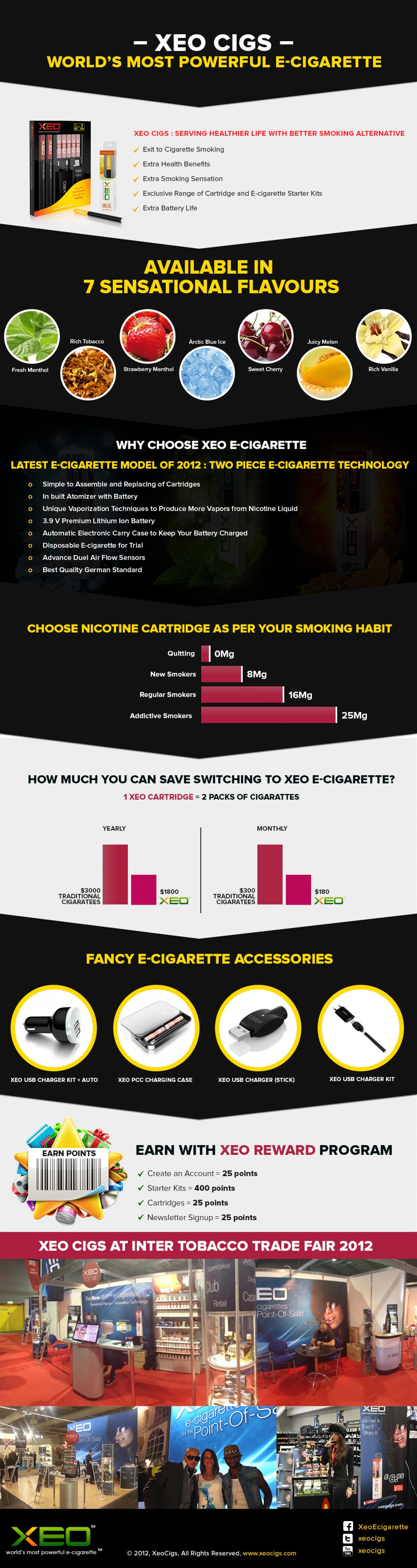 E-cigarette : Better Smoking Alternative Infographic