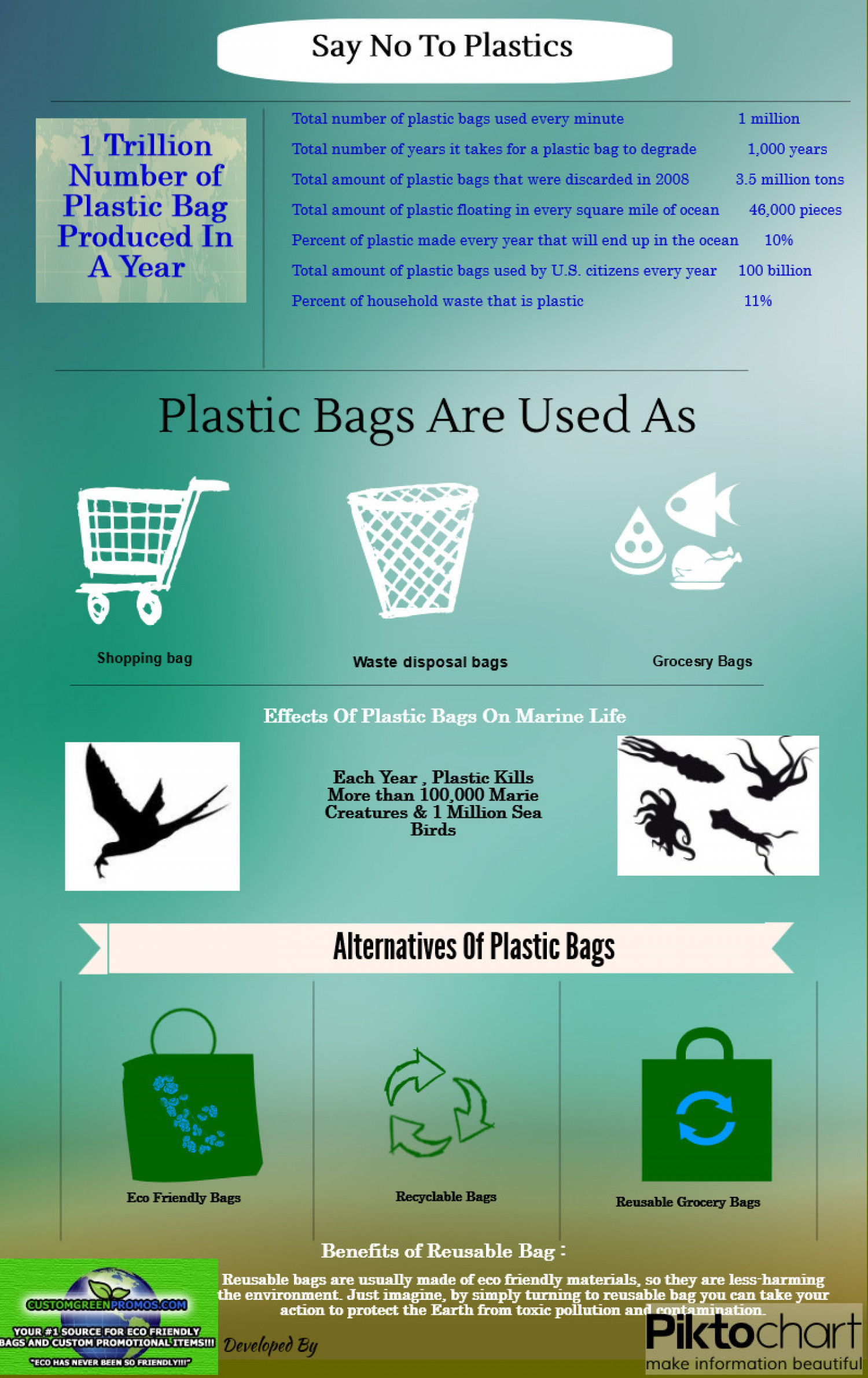 Eco Friendly Bags Infographic