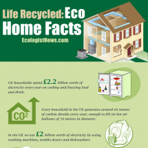 Eco Home Facts  Infographic