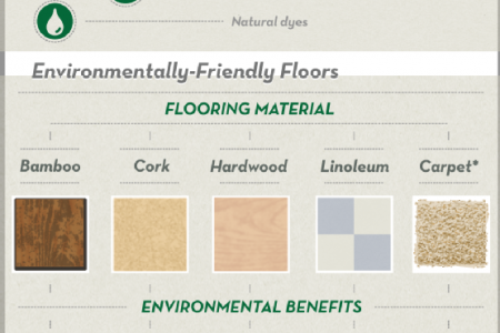 Eco-Friendly Flooring Options Infographic