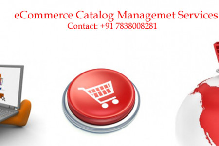 eCommerce Catalog Management Services in India Infographic