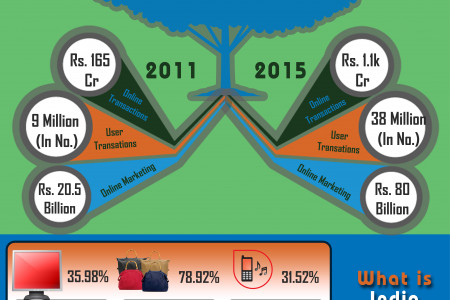 E-commerce Portal: Indian Aspect Infographic