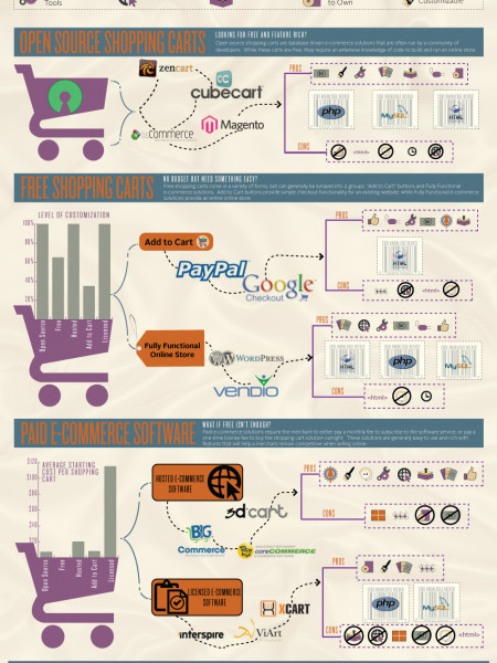 Ecommerce Shopping Carts & Shipping Options Infographic