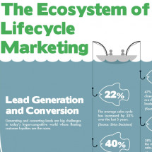 Ecosystem of Lifecycle Marketing Infographic