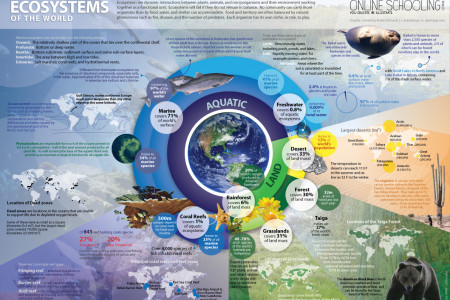 Ecosystems of the World Infographic