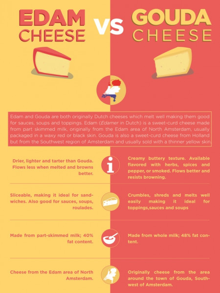 Edam vs Gouda Cheese Infographic